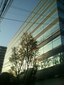 ビル 新宿 文化 クイント